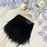 Перья страуса на ленте, черные (Черный)