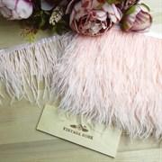 Перья страуса на ленте, розовый лотос