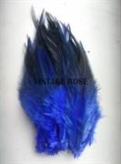 Перо фазана, синее