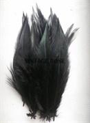 Перо фазана, черное