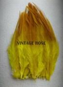 Перо фазана, желтое